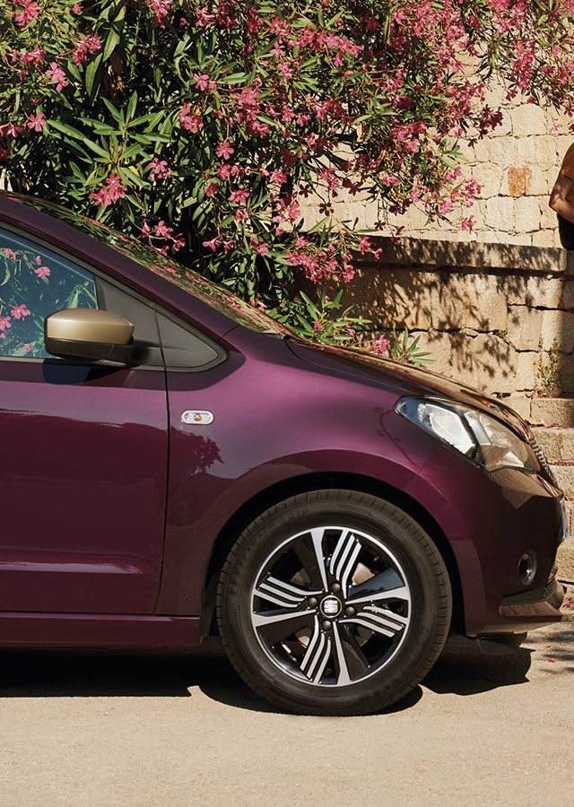 SEAT Mii shopping car