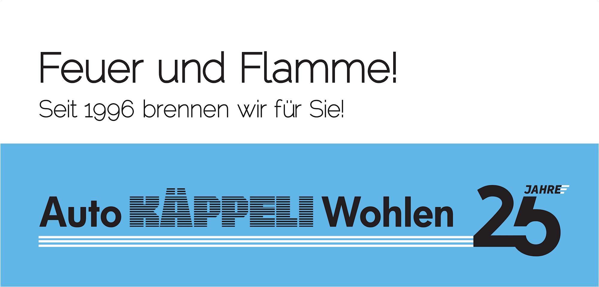 Plakat_F12_25_Jahre_print_Feuer