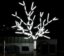 Leuchtbaum_cropped_trans